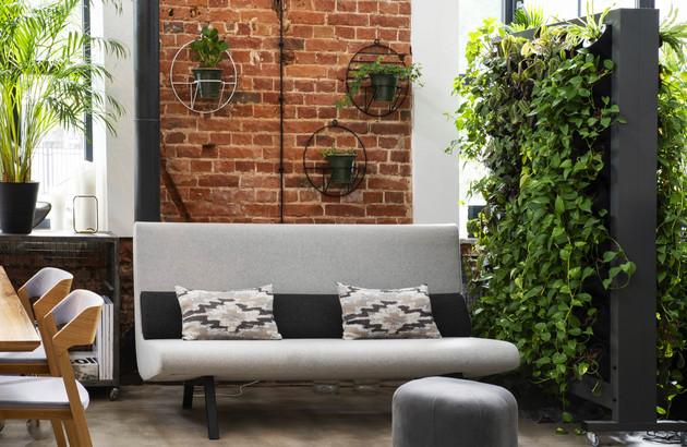 Le mur végétal pour une climatisation naturelle