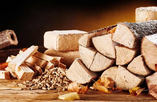 Les différents types de combustible bois