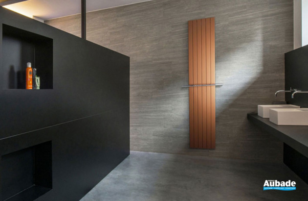Radiateur Viola Vasco dans une salle de bains classique
