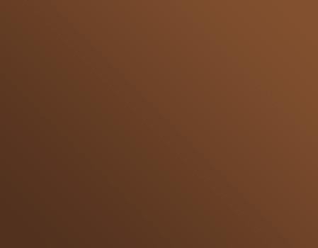Dégradé de brun à marron clair