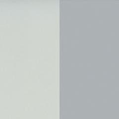 couleur grise bleutée et couleur grise