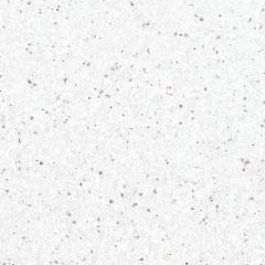 Coloris Artic brillant