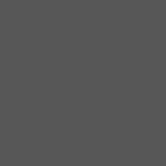 couleur gris foncé