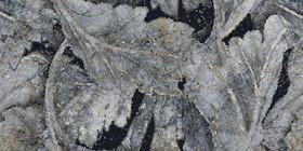 Décor Emil Ceramica Tele di Marmo Revolution Blu Ande Acanto