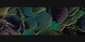 Décor Villeroy & Boch Rockyart Magical Blue