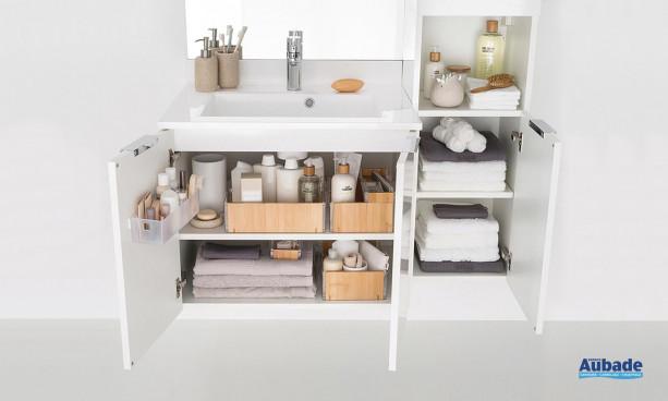 Meuble salle de bain Delphy Evolution EP105MJG 2