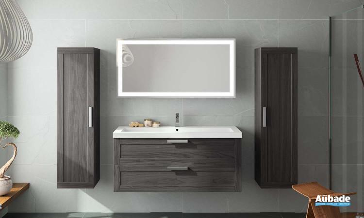 meuble salle de bains Origine cedam, vue d'ensemble