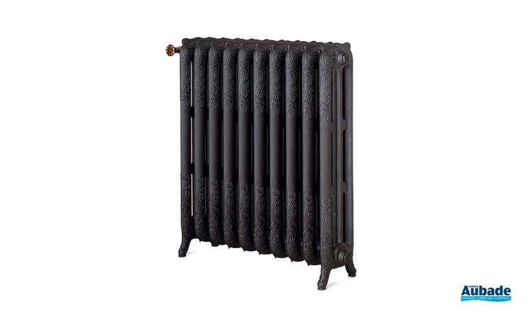 Radiateur pour chauffage central vintage Floréal de Chappee