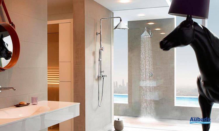 showerpipe au mur
