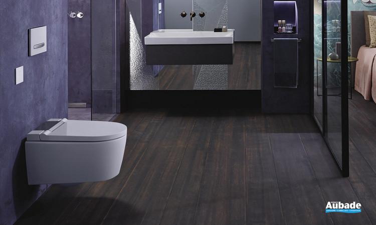 toilettes wc lavant geberit aquaclean sela