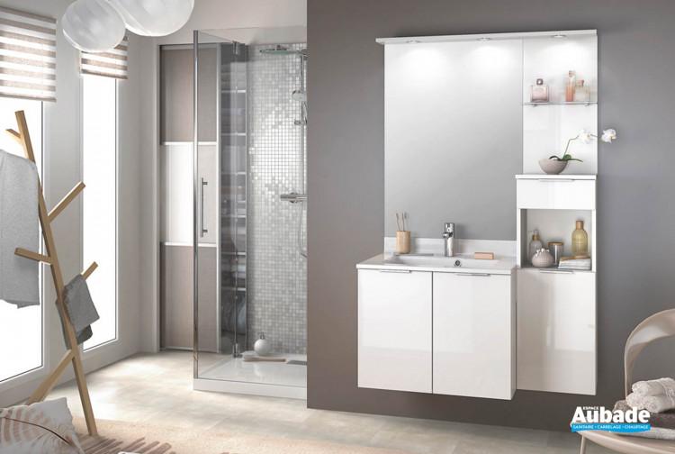 Meuble salle de bain Delphy Evolution EP105MJG