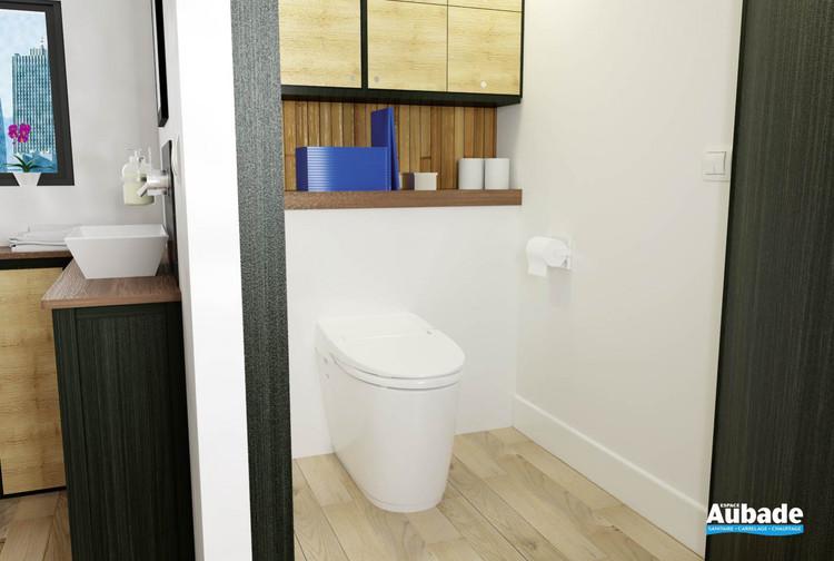 Broyeur WC Sanismart de SFA