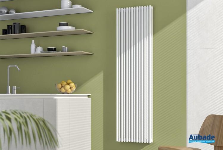 Radiateur élégant pour chauffage central Opus Vertical de Finimétal
