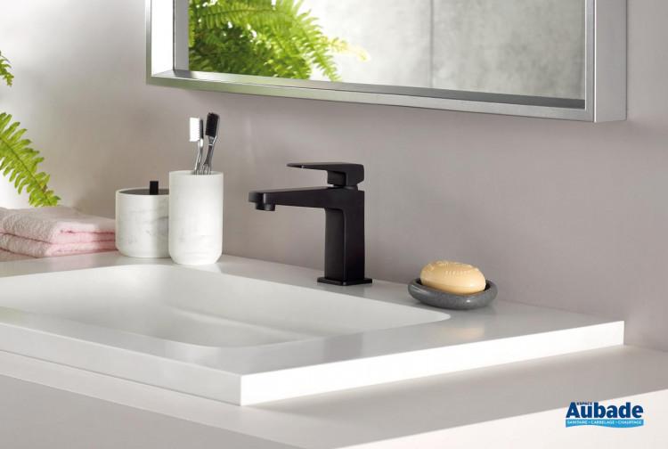 Robinet lavabo echo série noire