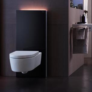 wc Geberit panneau Monolith Plus