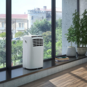 Dolceclima Compact 8 P