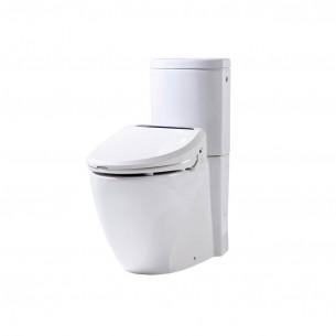 WC Dubourgel ensemble posé Pack WC multifonctions