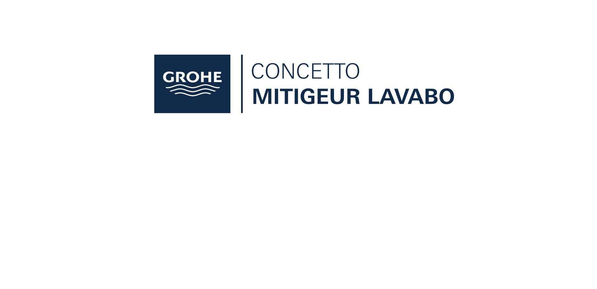 Mitigeur monocommande Lavabo Taille S Concetto Chromé de Grohe